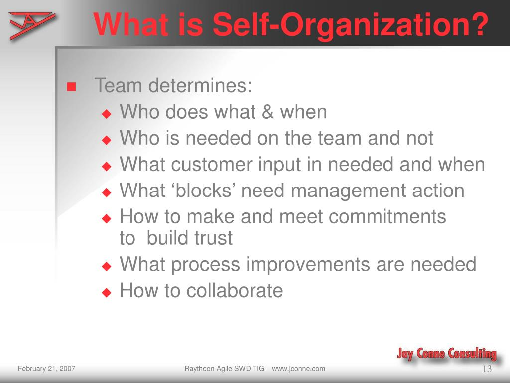 What is Self-Organization?
