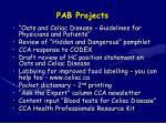 pab projects