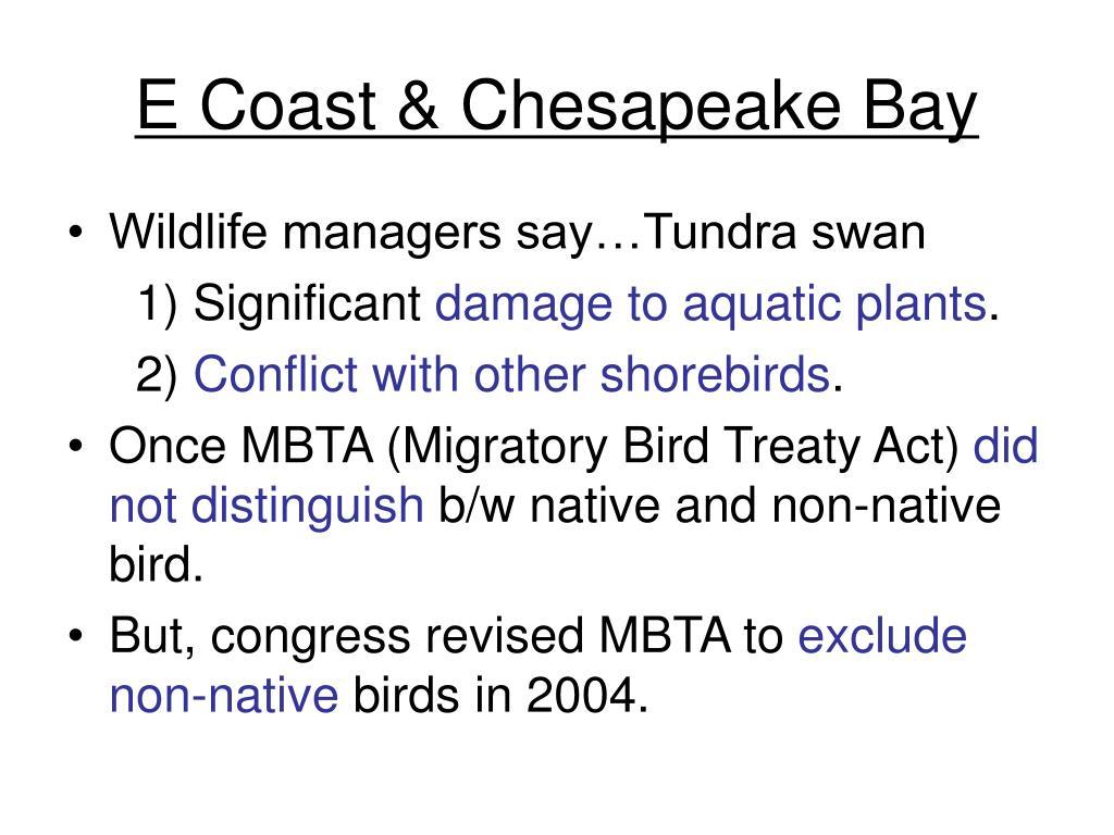 E Coast & Chesapeake Bay