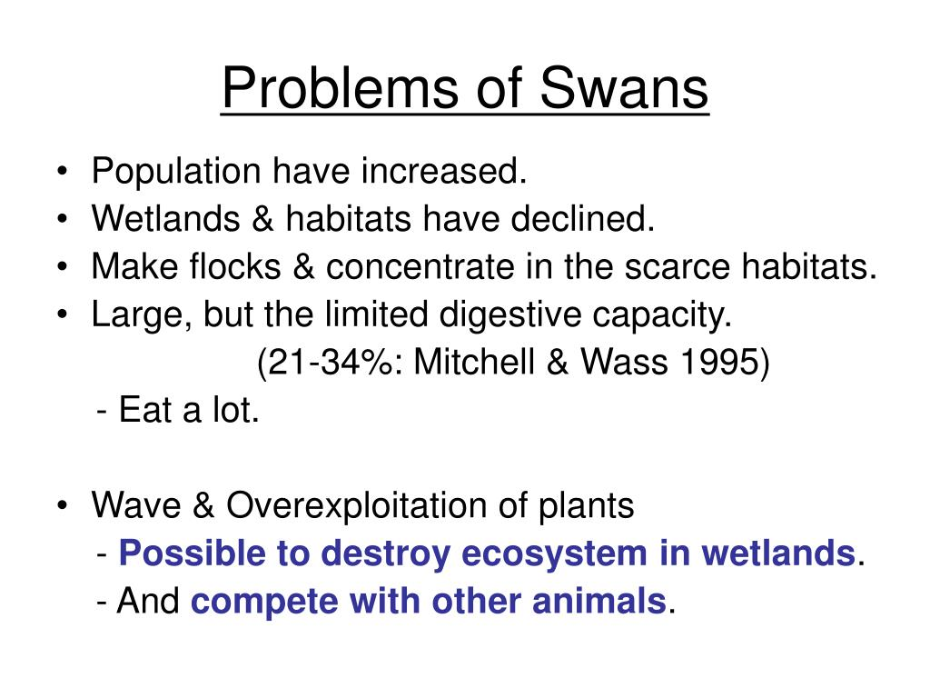 Problems of Swans