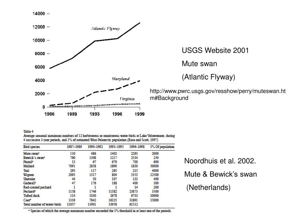 USGS Website 2001