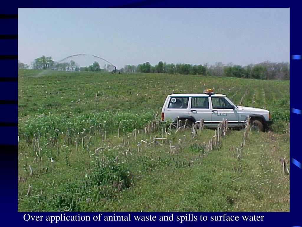 Over application of animal waste and spills to surface water