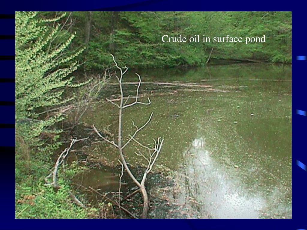 Crude oil in surface pond