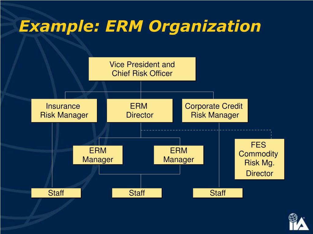 Example: ERM Organization