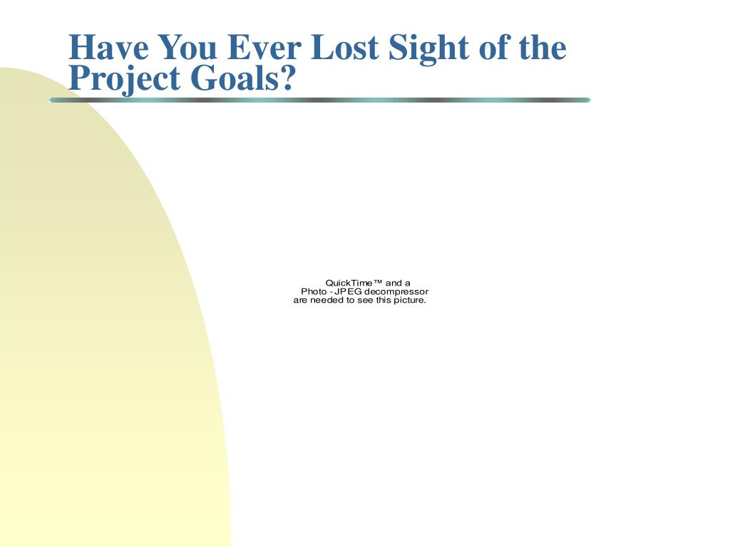 Have You Ever Lost Sight of the Project Goals?