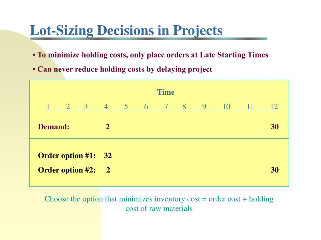 Lot-Sizing Decisions in Projects