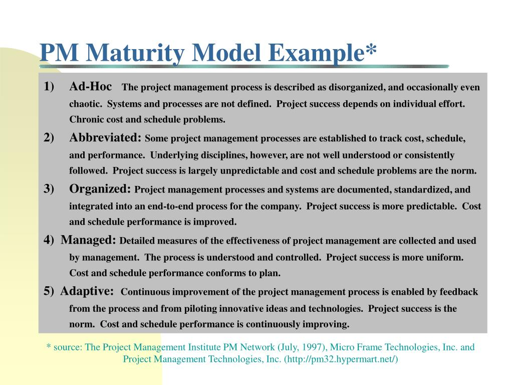 PM Maturity Model Example*