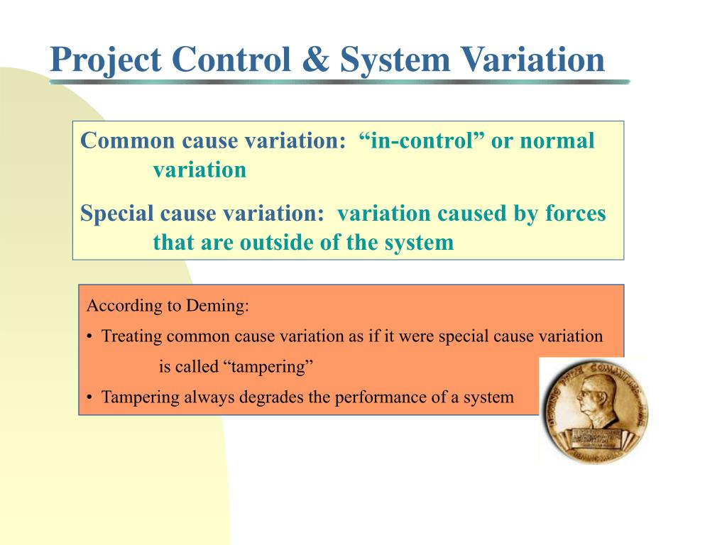 Project Control & System Variation