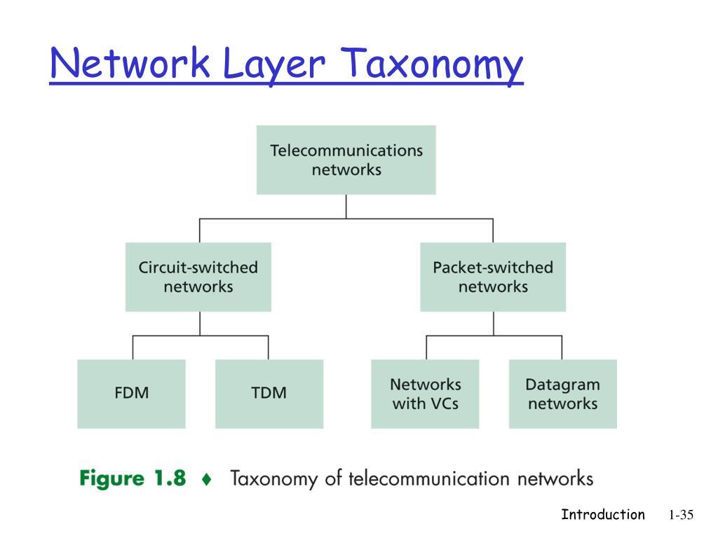Network Layer Taxonomy