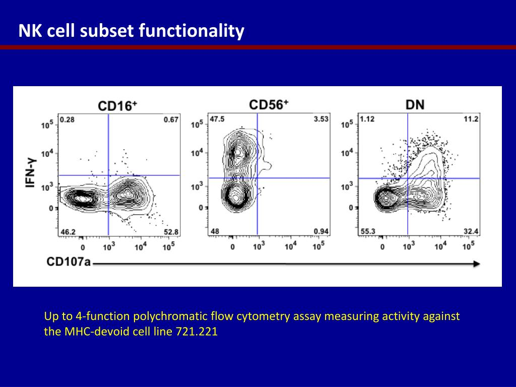 NK cell subset functionality