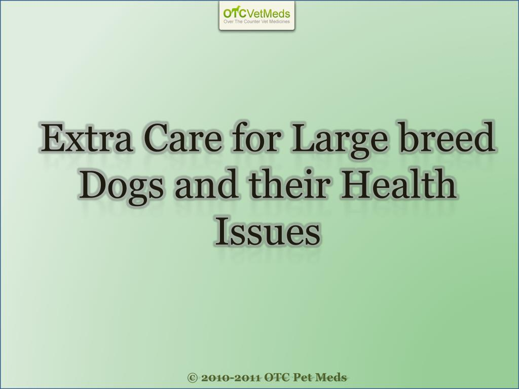 Extra Care for Large breed Dogs and their Health