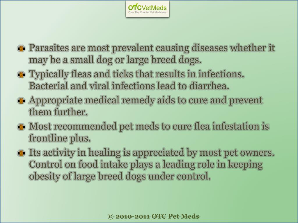Parasites are most prevalent causing diseases whether it may be a small dog or large breed dogs.