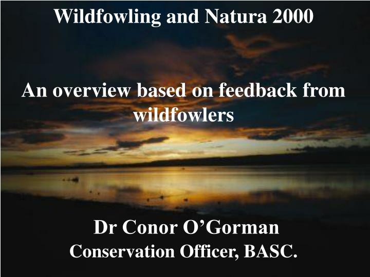 Wildfowling and Natura 2000