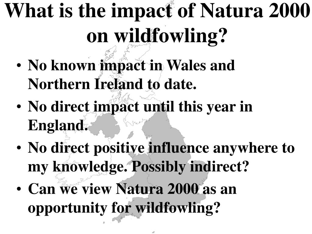 What is the impact of Natura 2000 on wildfowling?