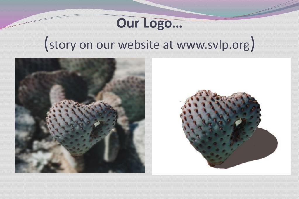 Our Logo…