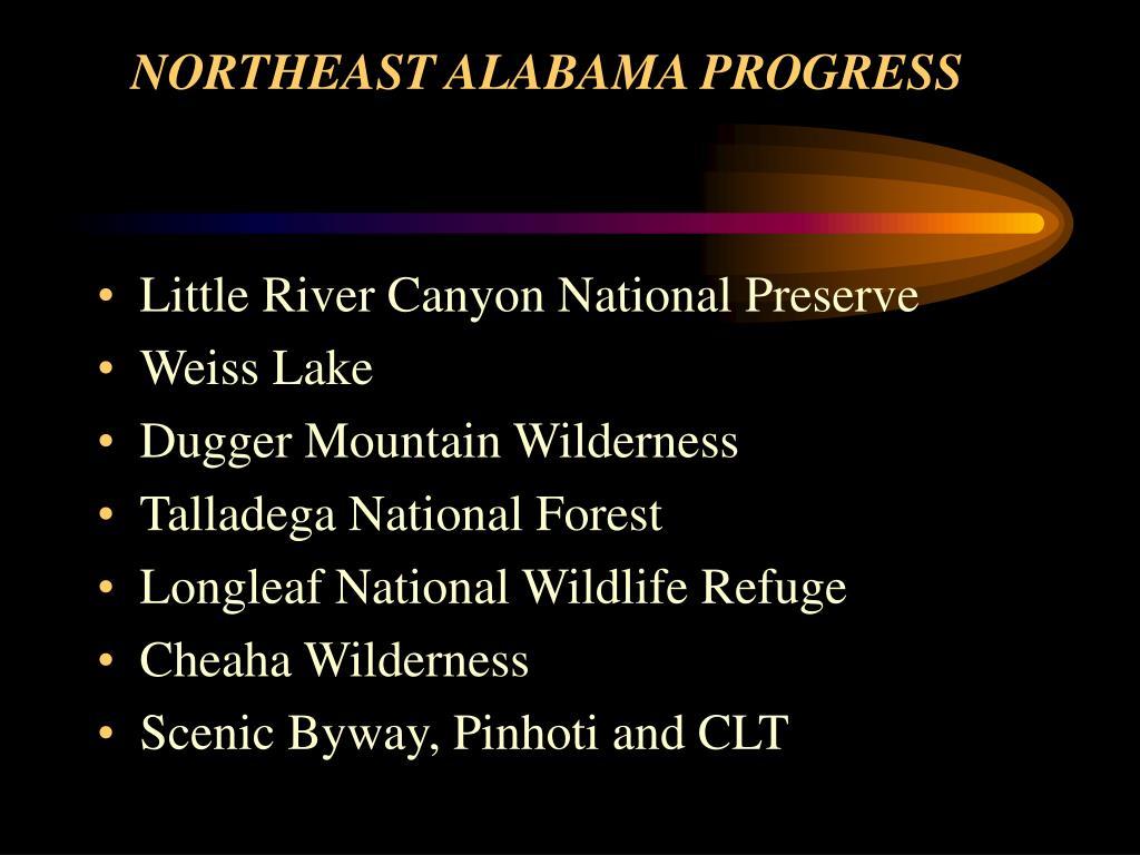 NORTHEAST ALABAMA PROGRESS