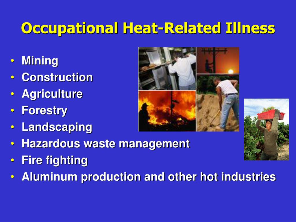 Ppt – heat stress powerpoint presentation | free to download id.