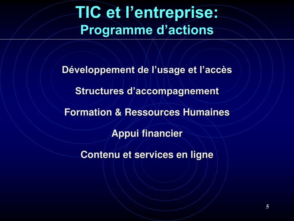TIC et l'entreprise: