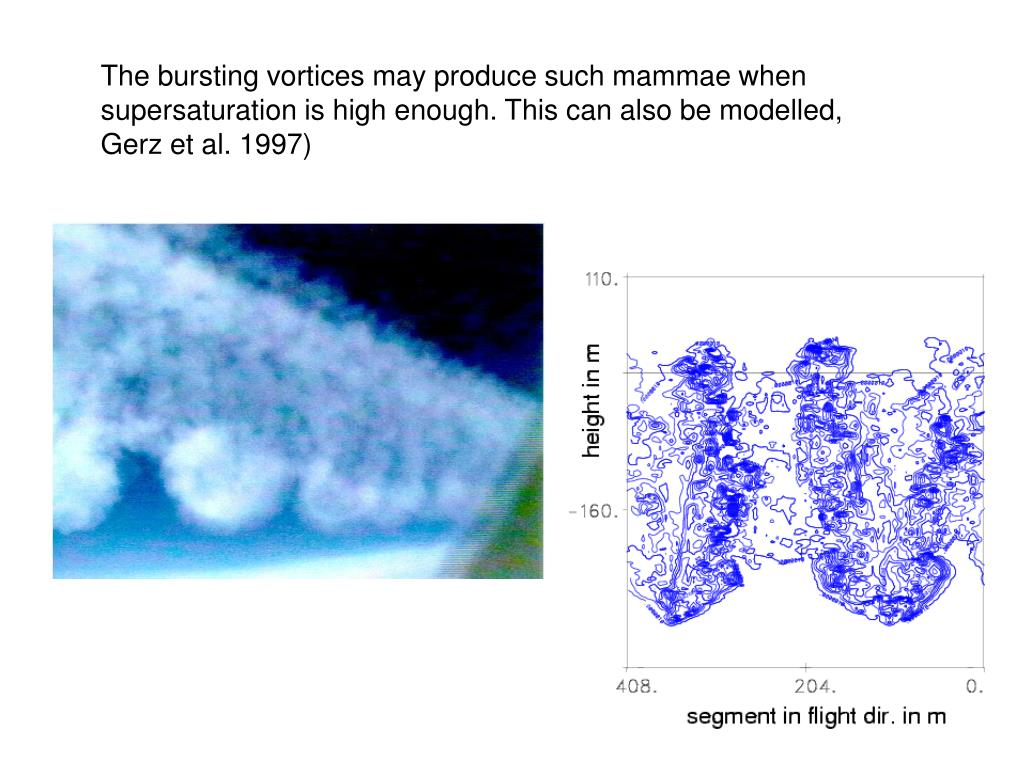 The bursting vortices may produce such mammae when