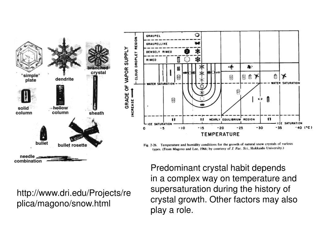 Predominant crystal habit depends