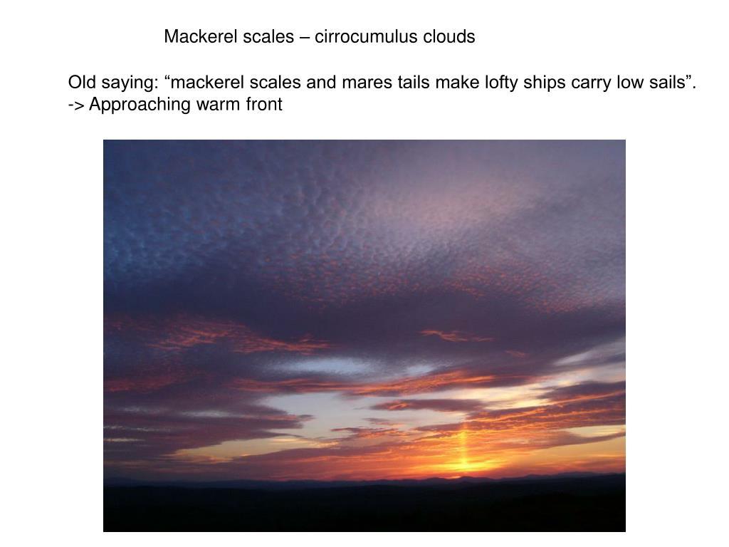 Mackerel scales – cirrocumulus clouds