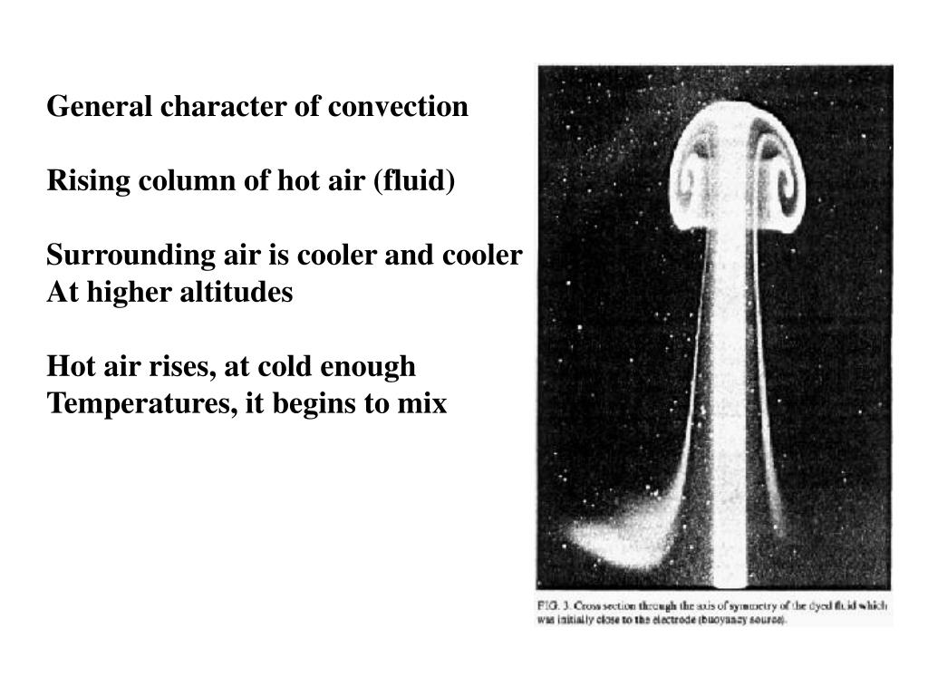 General character of convection