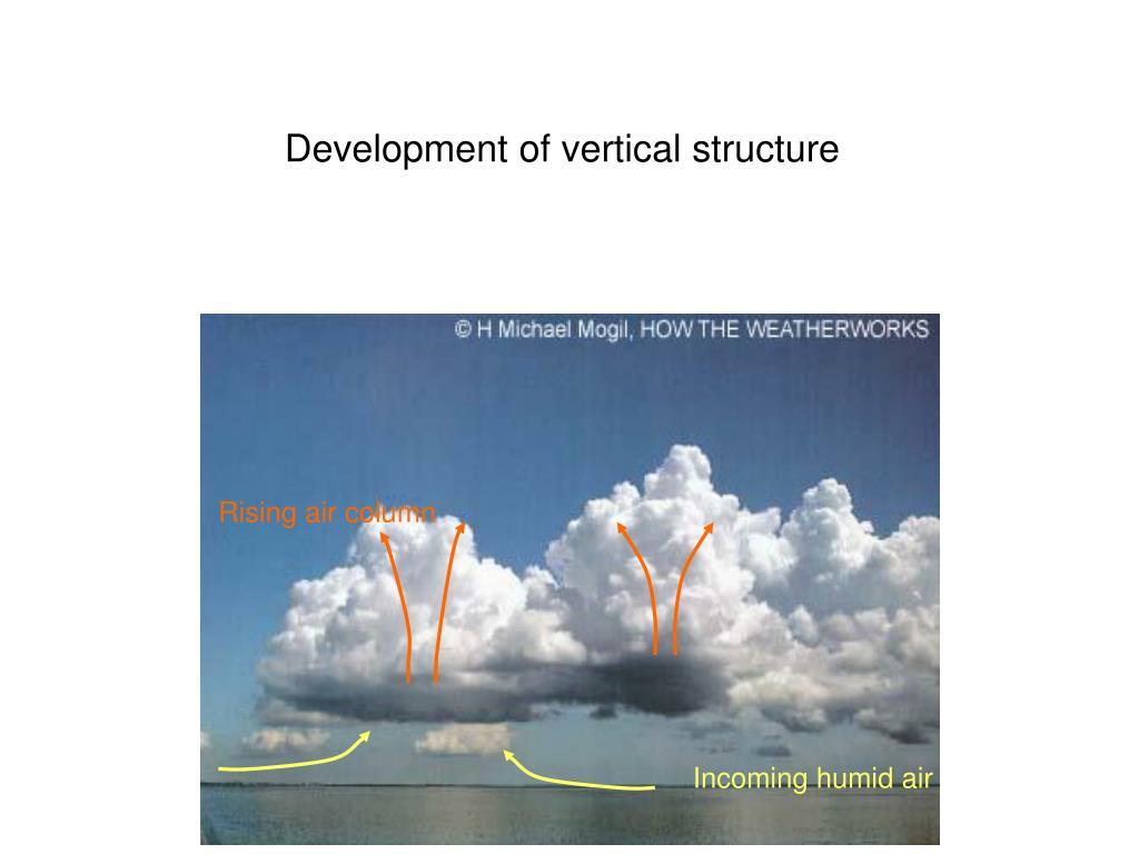 Development of vertical structure