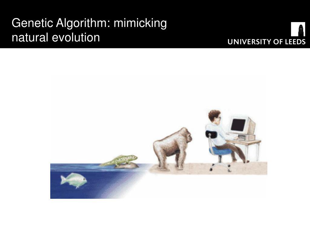 Genetic Algorithm: mimicking natural evolution