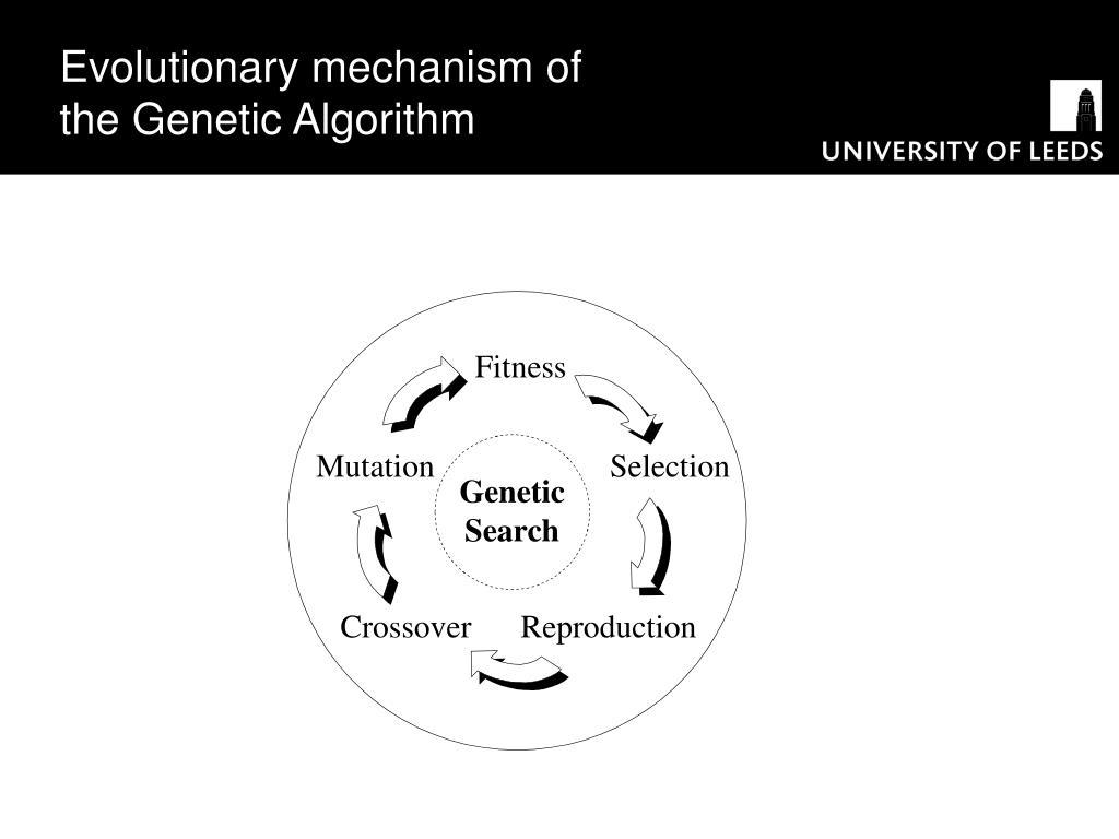 Evolutionary mechanism of the Genetic Algorithm