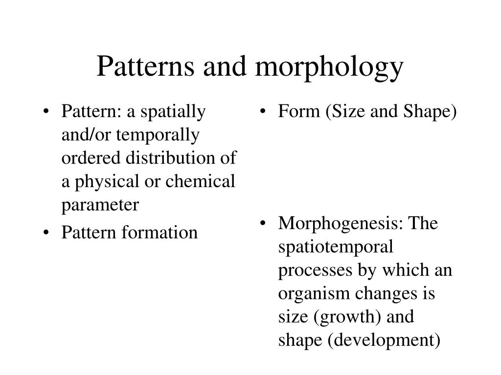 Pattern: a spatially and/or temporally ordered distribution of a physical or chemical parameter