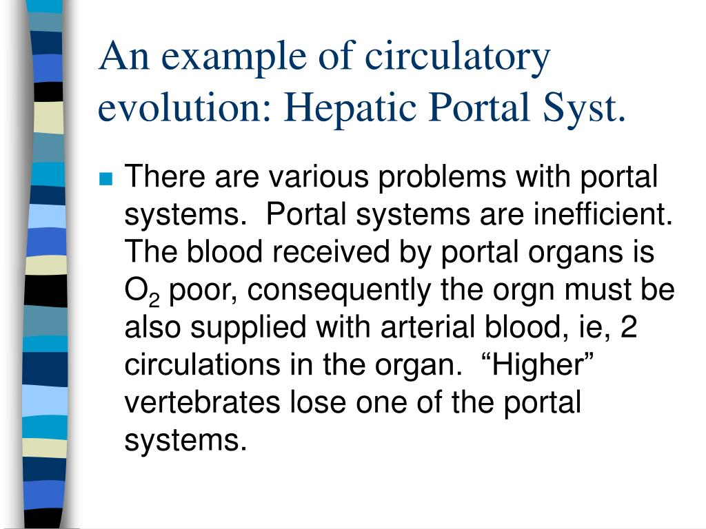 An example of circulatory evolution: Hepatic Portal Syst.