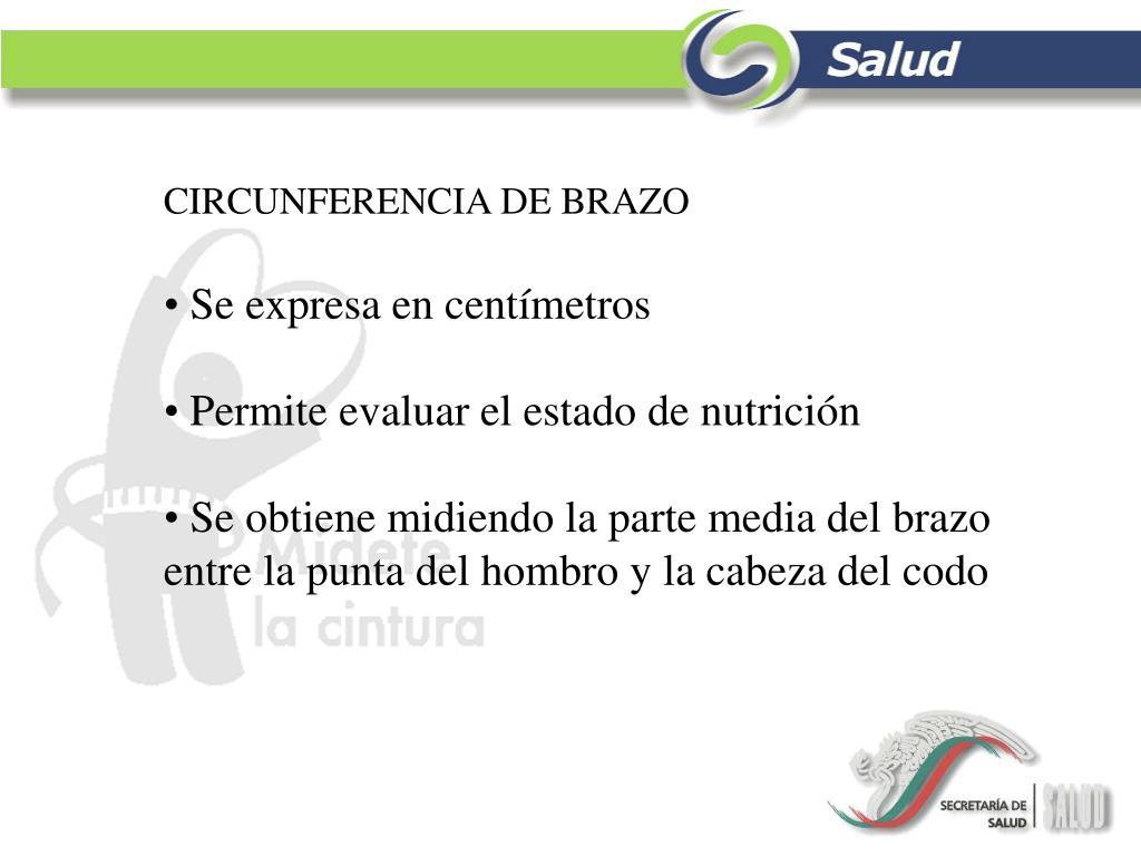 CIRCUNFERENCIA DE BRAZO