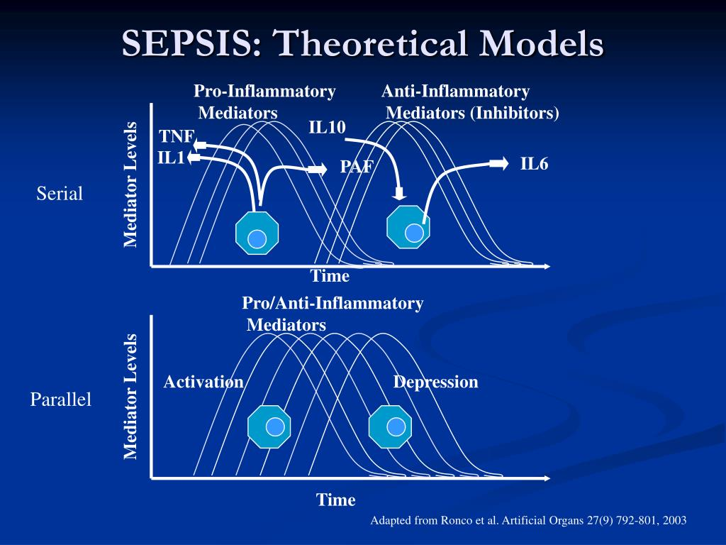 SEPSIS: Theoretical Models