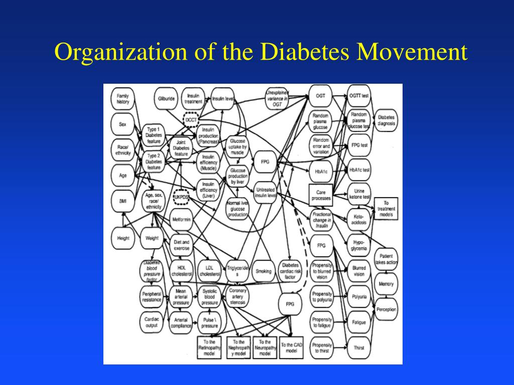 Organization of the Diabetes Movement
