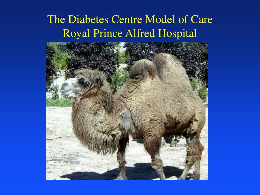 The Diabetes Centre Model of Care