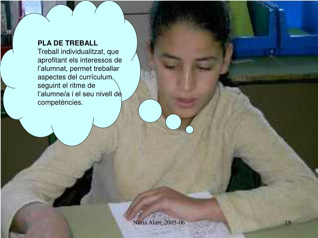 PLA DE TREBALL