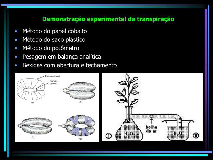 Demonstração experimental da transpiração
