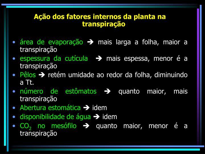 Ação dos fatores internos da planta na transpiração