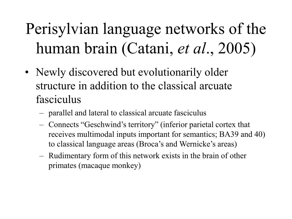 Perisylvian language networks of the human brain (Catani,