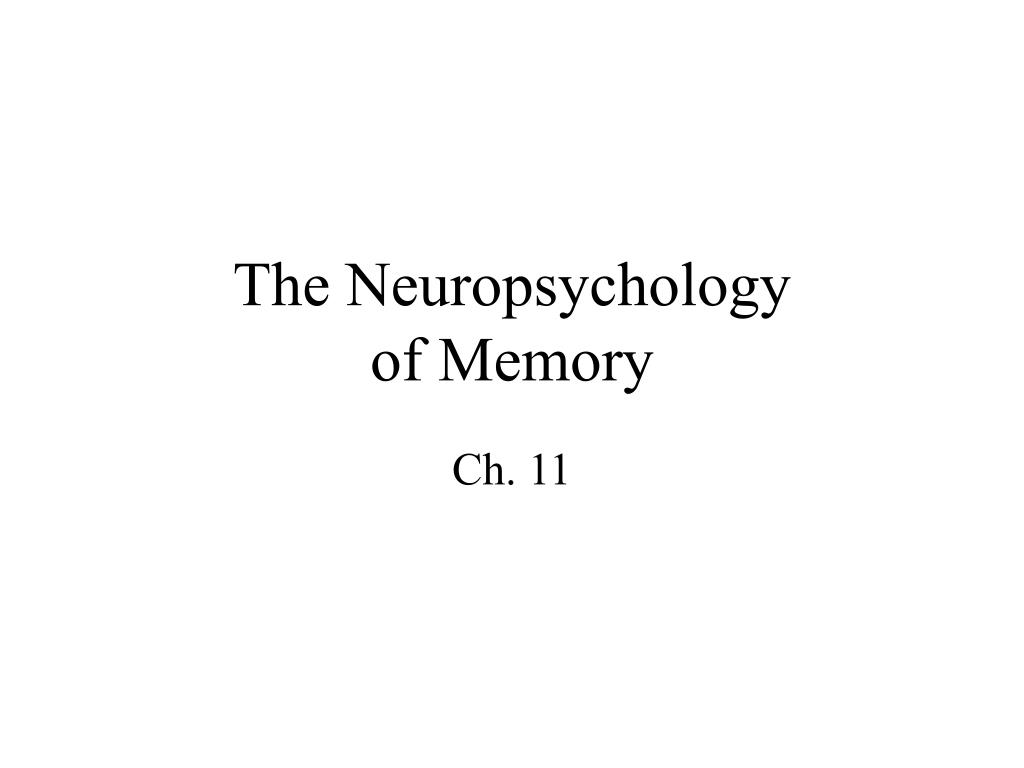 The Neuropsychology