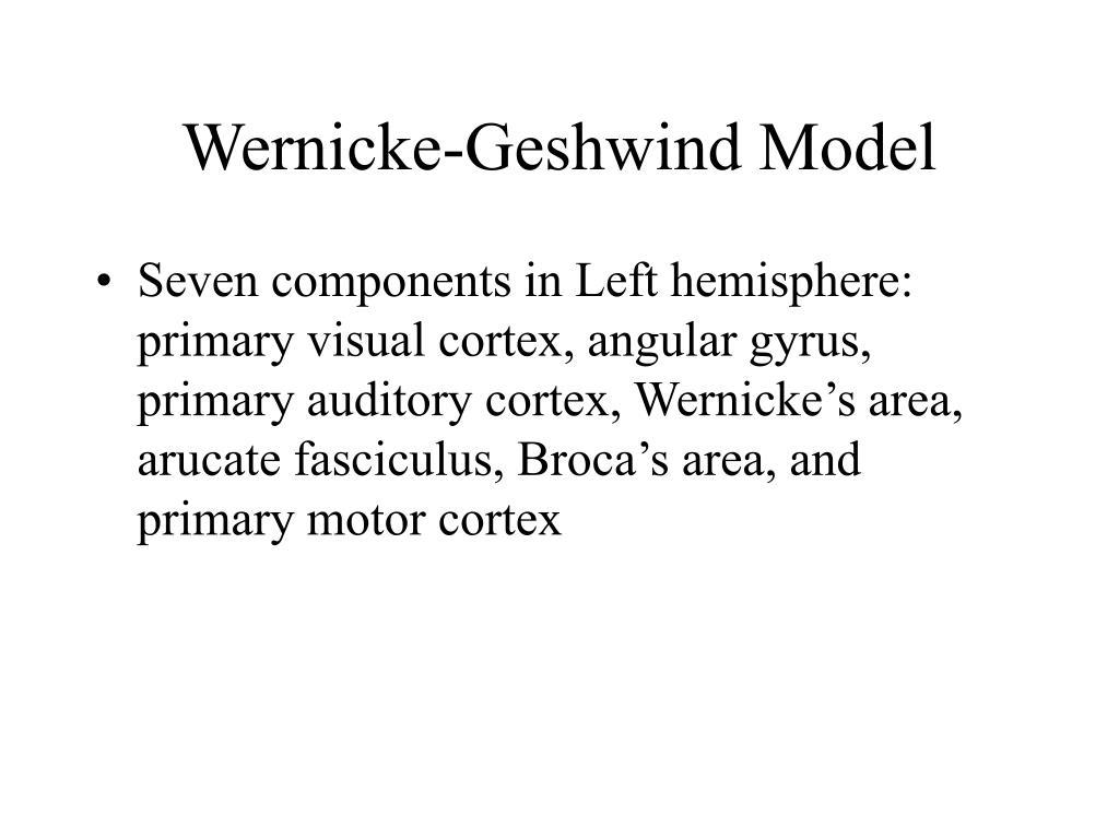 Wernicke-Geshwind Model