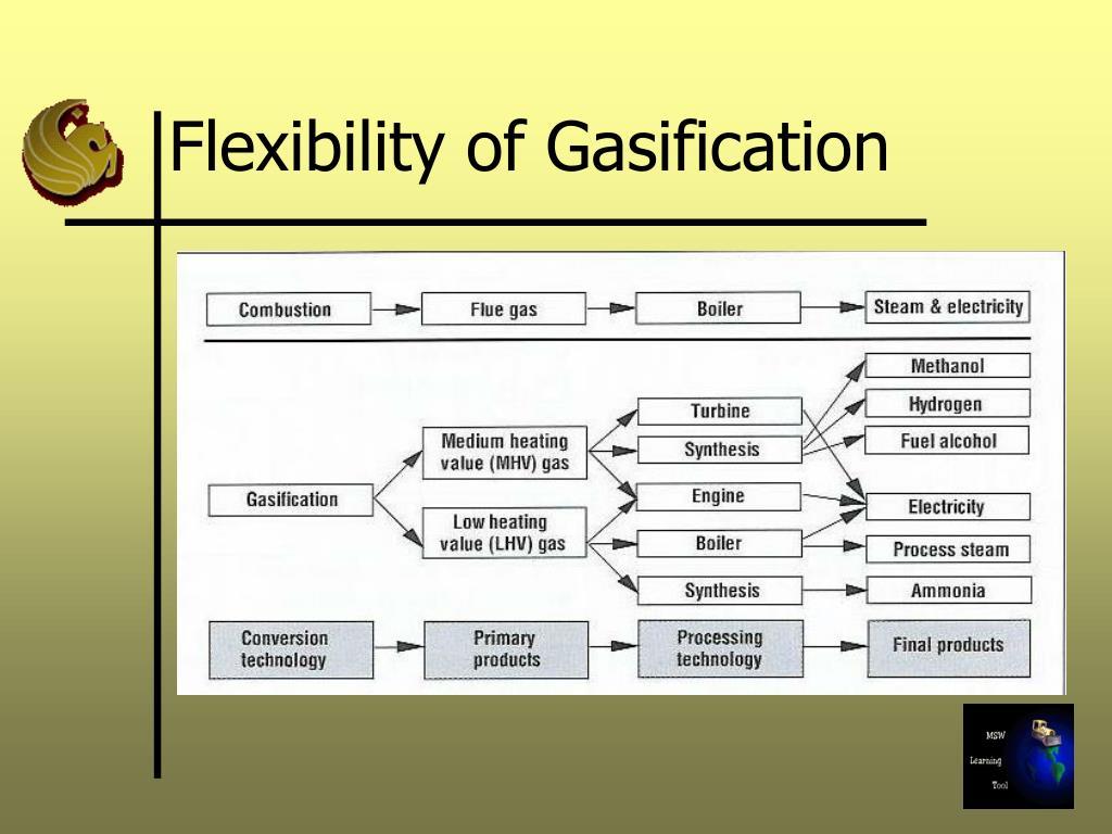 Flexibility of Gasification