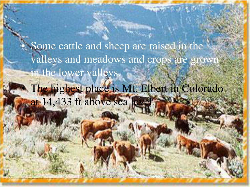 Some cattle and sheep are raised in the valleys and meadows and crops are grown in the lower valleys.