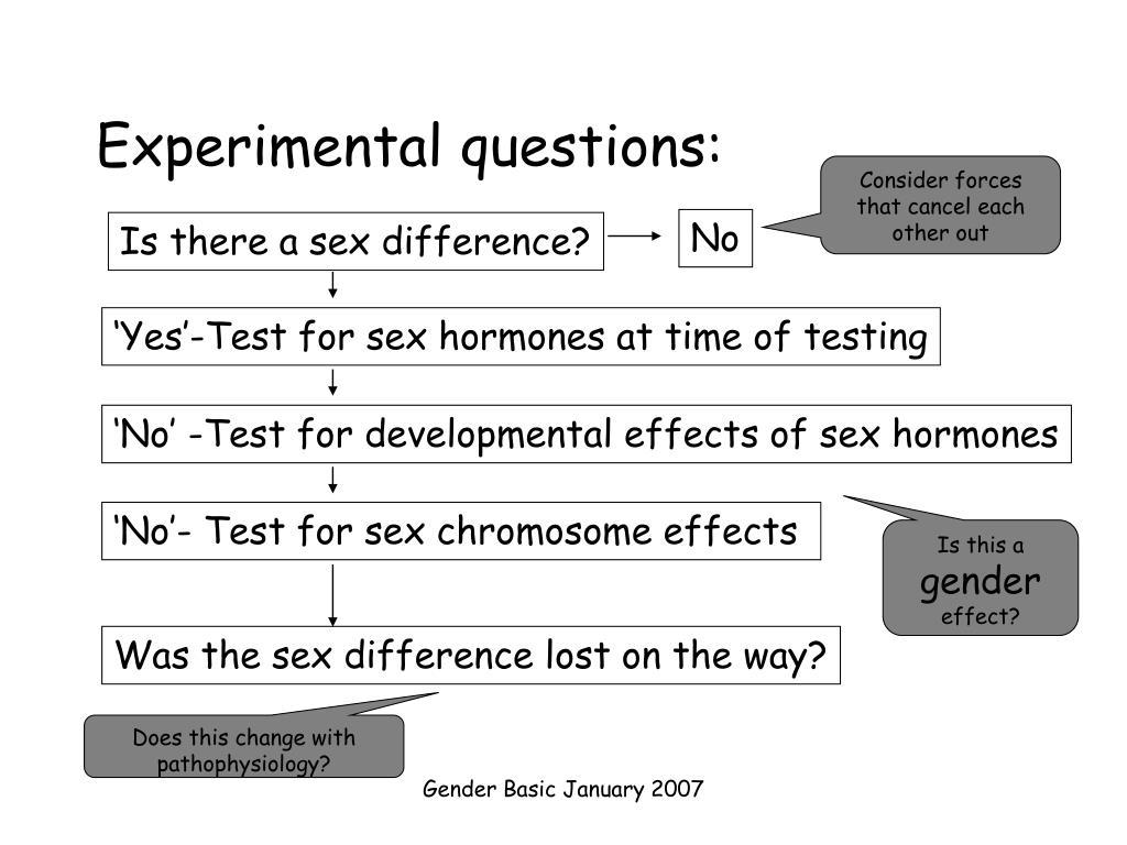 Experimental questions: