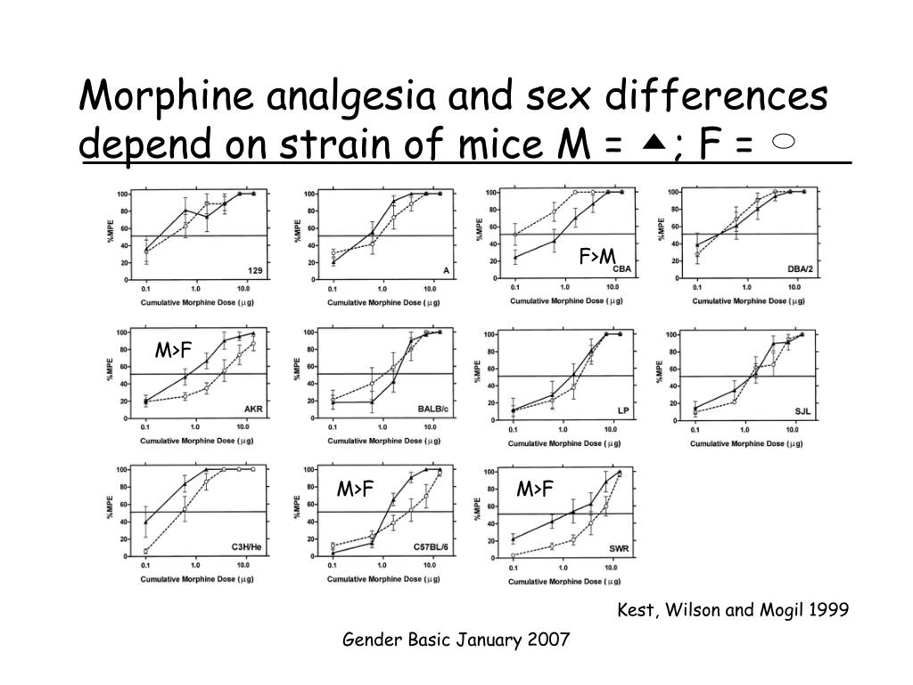 Morphine analgesia and sex differences depend on strain of mice M =    ; F =