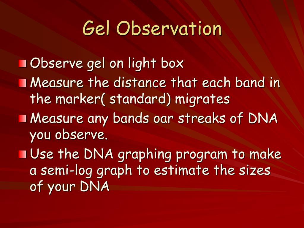 Gel Observation