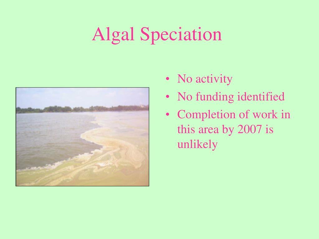 Algal Speciation