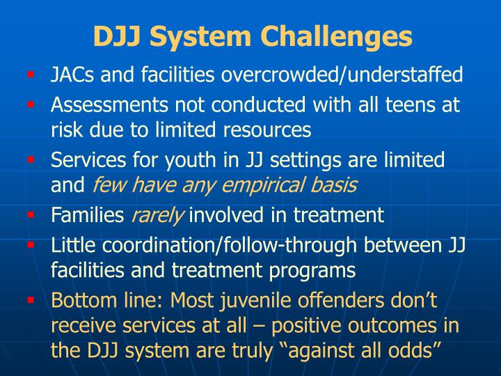 DJJ System Challenges
