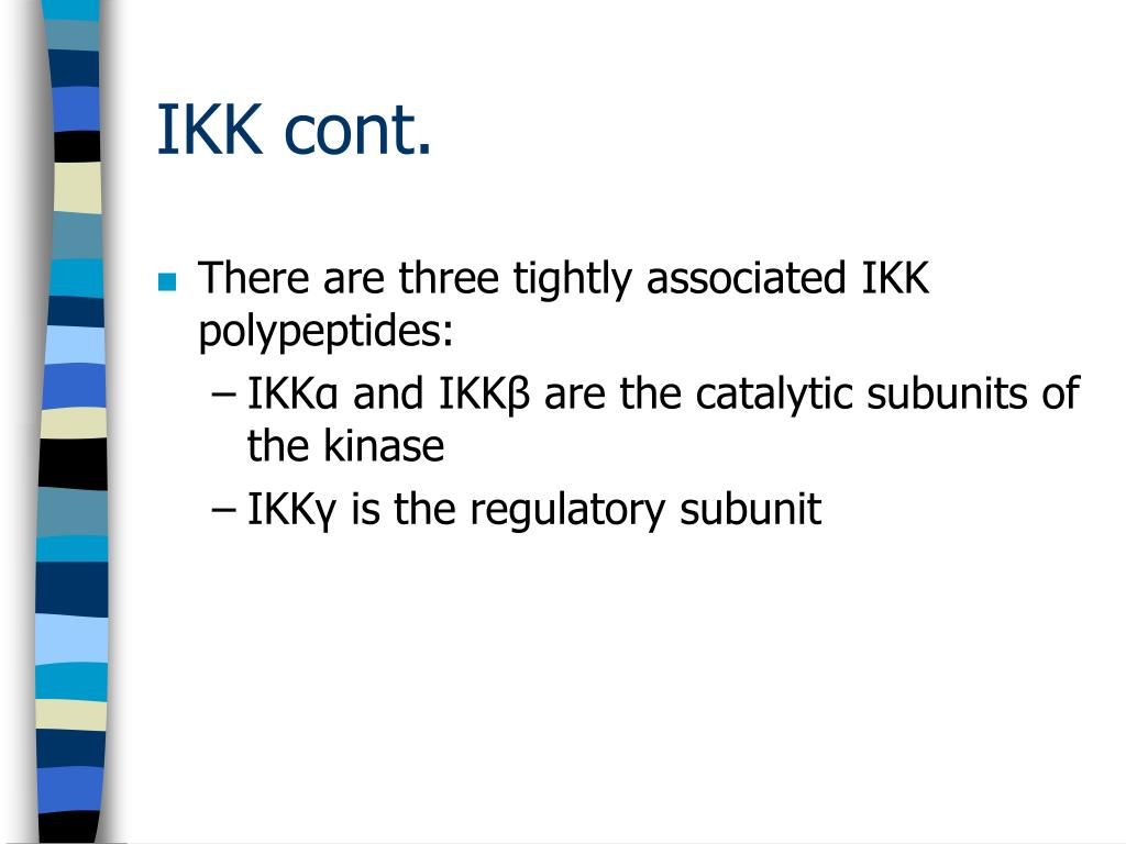 There are three tightly associated IKK polypeptides:
