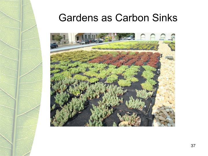 Gardens as Carbon Sinks